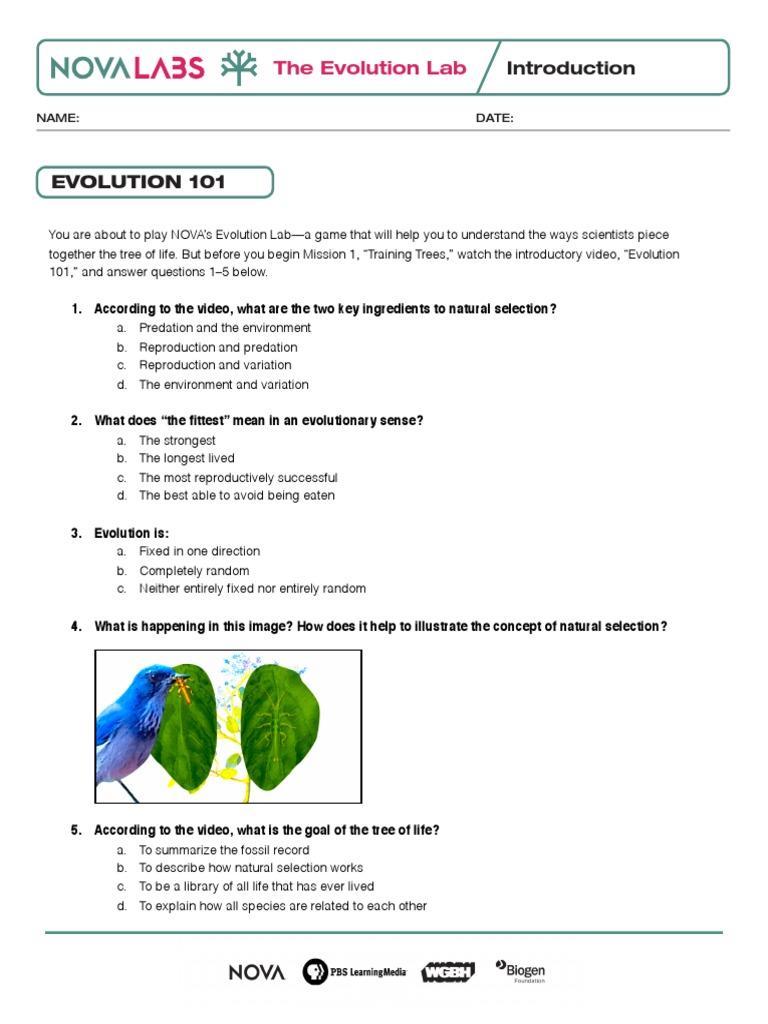 Worksheet Evolution Worksheets Grass Fedjp Worksheet Study Site