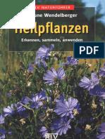 Heilpflanzen - Dr. Elfrune Wendelberger