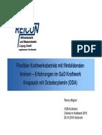 V_06_Wagner_Reicon.pdf