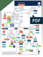 Poster Diagnostico Diferencial DIARREA