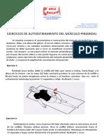 AUTOESTIRAMIENTOS DEL PIRAMIDAL.pdf