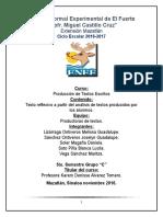 Texto Reflexivo a Partir Del Análisis de Textos Producidos Por Los Alumnos (1)