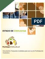 Participación Ciudadana - Resumen.pdf