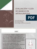 Evaluación y Guía de Manejo en Artrogriposis