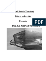 Delta and Estuaries