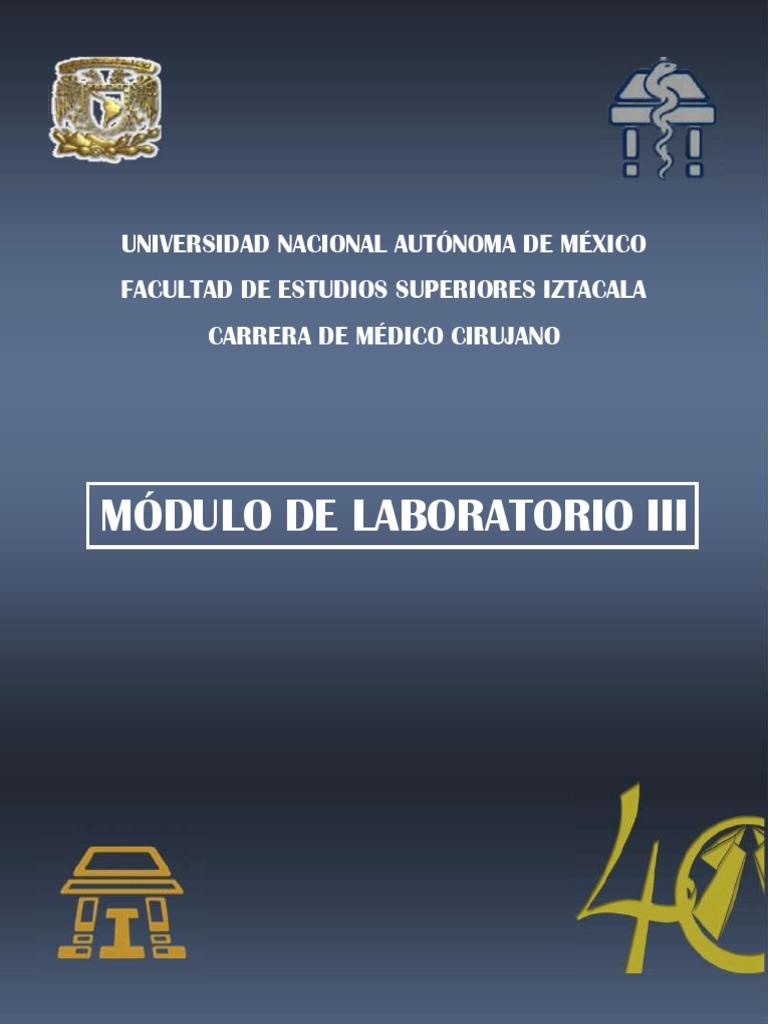 M. LABORATORIO III.pdf