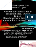 development and menstrual cycle