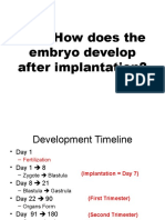 how does the embryo develop after implantation