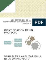 Los Contenidos de La Identificación en Un Proyecto