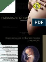 Embarazo Normal Seminario Ix Luis y Junis
