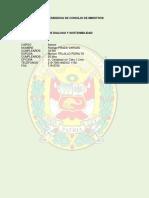 Asesor Pnp - Pcm