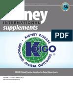 KDIGO AKI Guideline.pdf