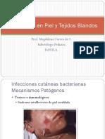 1. Infecciones en Piel y Tejidos Blandos (D)