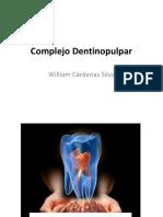 Complejo Dentinopulpar BN