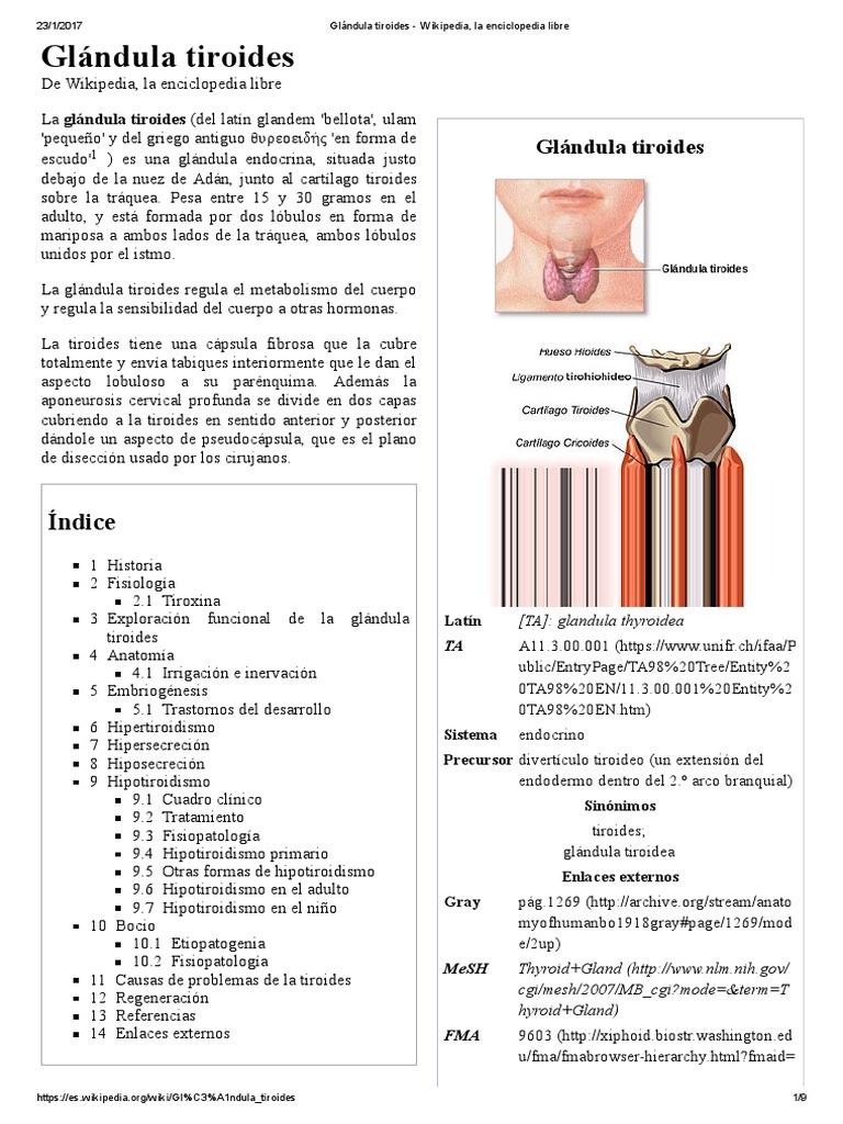 Fantástico Anatomía Y Fisiología Wikipedia Ilustración - Imágenes de ...