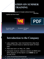 risk management in punjab national bank