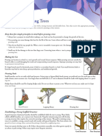 Pruning_YoungTrees.pdf