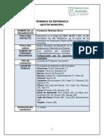 TORS Gestor Municipal - Proyecto ERM -FRb.pdf