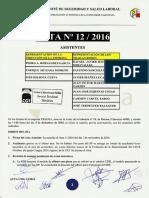 Acta 12/2016 Comité Seguridad y Salud Laboral Tragsa UT 2 CV