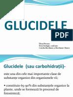 GLUCIDE Biochimia Descriptiva 2016