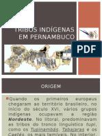 2º Ano - Tribos Indígenas Em Pe