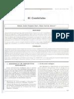 El combitubo.pdf