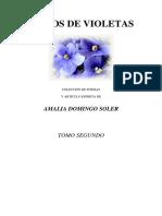 Amália Domingo y Soler - Ramos de Violetas (Tomo Segundo).pdf