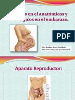 embarazo y consideraciones 2016 (1)