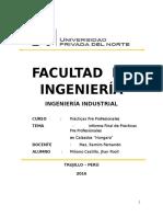 Practicas Pre Profesinales Informe Final