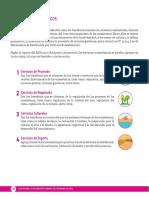 Conceptos Servicios Ecosistémicos