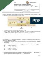 2º TESTE DE 7º ANO 2016 1.docx