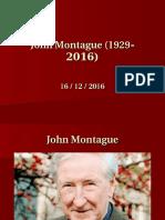 7) Irish Montague