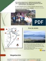 Uso de plantas aromáticas y medicinales en áreas ppt.pptx