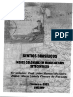 indios coloniais em Minas gerais ResendeMariaLeôniaChavesde.pdf