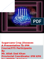 Sugarcanecropdiseases 151031020117 Lva1 App6892