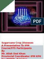 Sugarcanecropdiseases 151031020117 Lva1 App6892