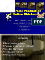 Commercial Prod Native Chicken 2012 - Copy