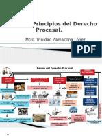 PRINCIPIOS DEL DERECHO