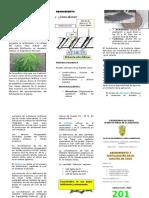 Triptico de Abonamiento y Fertilización (1)