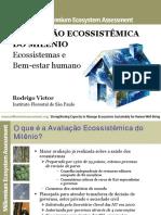 Avaliação Ecossistemica do Milenio.pdf