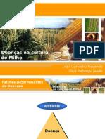 MILHO Doencas _Centro