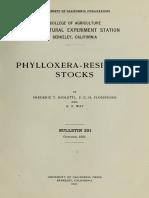 Phylloxera Resistant Stocks