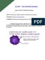 FLOTACION TRANSPORTADORA