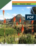 4.-Informe - Circuito Turistico Porcon