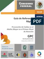 GRR_ISSSTE_134_08.pdf