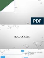 Bolock Cell Exposicionpilar 2