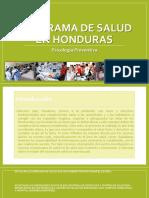 Panorama de Salud en Honduras