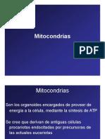 Microsoft PowerPoint - Mitocondrias - Peroxisomas