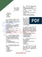 Examen Basal 1