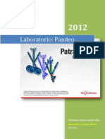 Laboratorio PANDEO UTP, 2012.pdf
